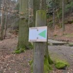 Bergpfad Goldsteig