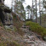 Goldsteig - grimmige Grimasse