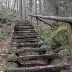 alte Holzstiege Hickelschlüchte