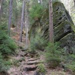 Waldklamotte Hickelschlüchte