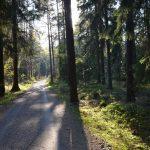 Pfaffensteinpromenade