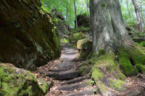 Abstieg Uttewalder Grund