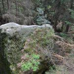 Fels mit Inschriften und Ausschlägelungen
