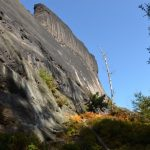 Heringstein Südwand